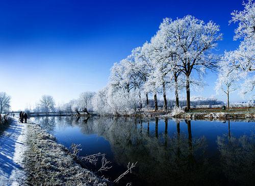 frozen 02