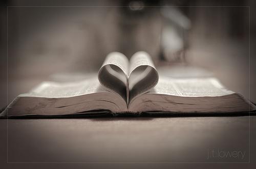 Que estoy leyendo? y que lei antes que vale la pena recomendar? - Página 5 San-valentin-08