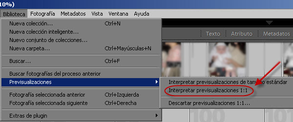 Lightroom - Previsualizaciones 1:1