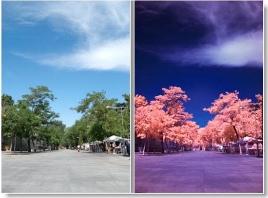 Otro ejemplo de uso de filtro infrarrojo