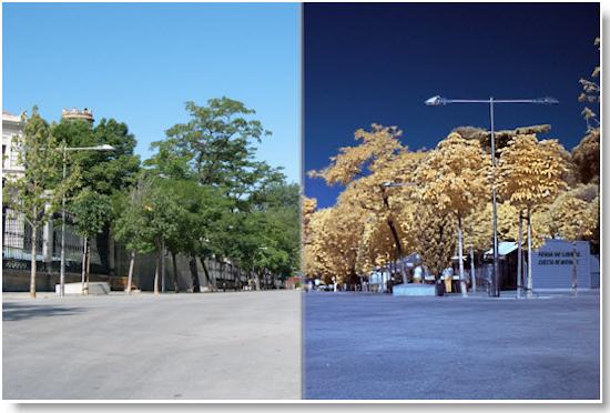 Otro ejemplo de uso de filtro infrarrojo 2
