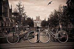 jaluro - Vuela hacia el Palacio Real