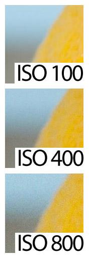 Efectos de la Sensibilidad ISO