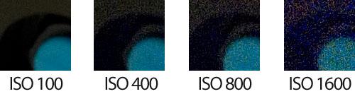 Sensibilidad ISO 100 a 1600 - Detalle 1