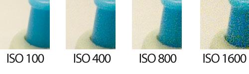 Sensibilidad ISO 100 a 1600 - Detalle 2