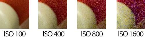 Sensibilidad ISO 100 a 1600 - Detalle 3