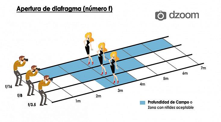 grafico-11