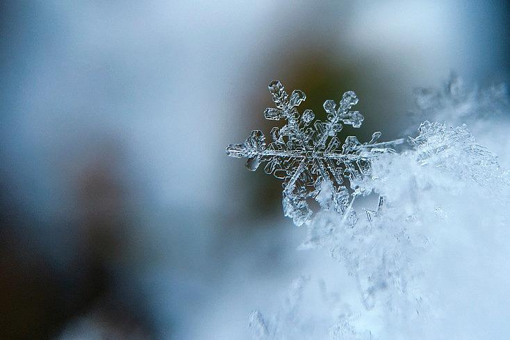 copo-nieve-macro