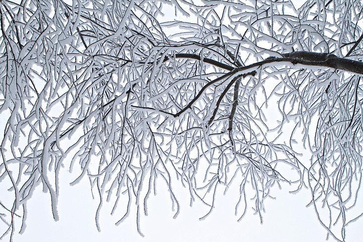 rocio-matinal-nieve-hielo