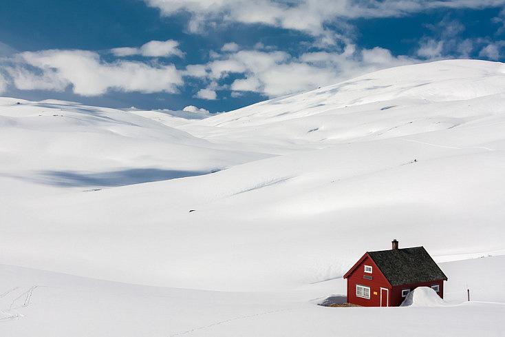 rojo-contraste-nieve-composicion
