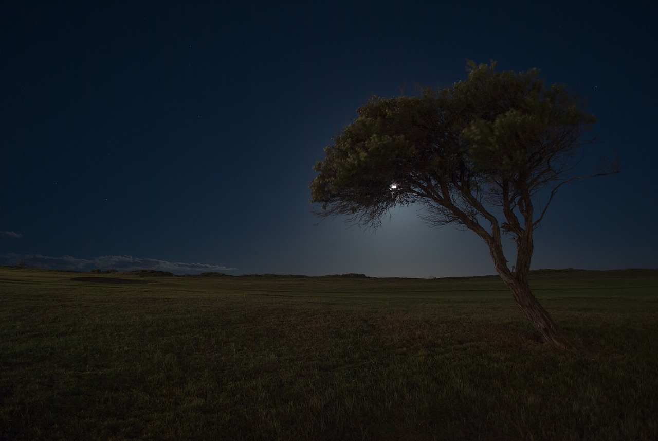 El Ruido… Enemigo Público Número Uno en Fotografía Nocturna y Cómo Hacerle Frente