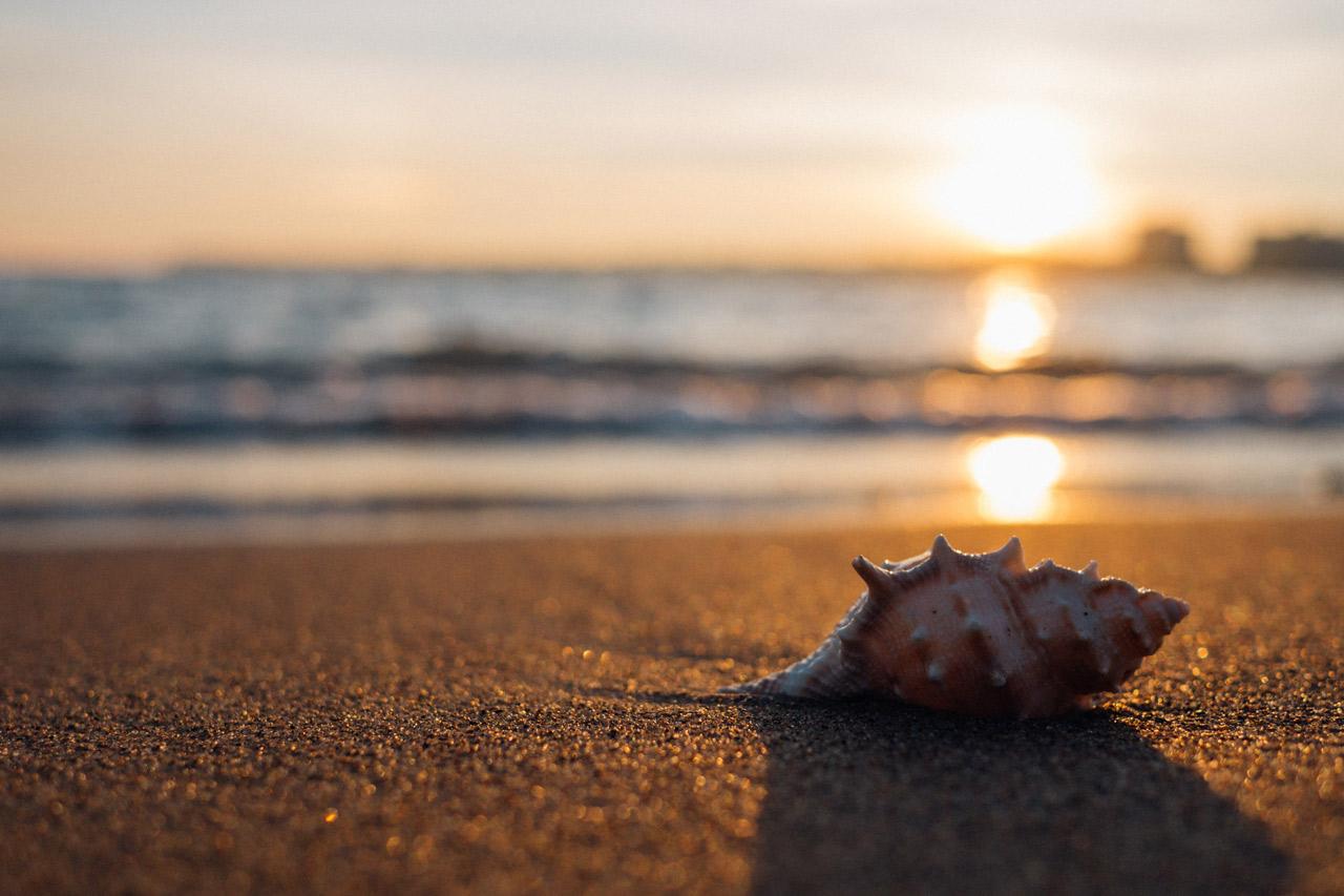 20 Fotos en la Playa Originales para Inspirarte