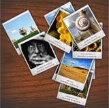 wpid-collage-flickr.jpg