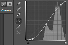 wpid-curvasYniveles-mini.jpg