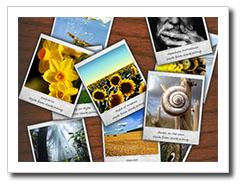 Las 9 Claves para Elegir el Papel Fotográfico Perfecto