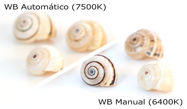 WB - Comparación Automático y Manual