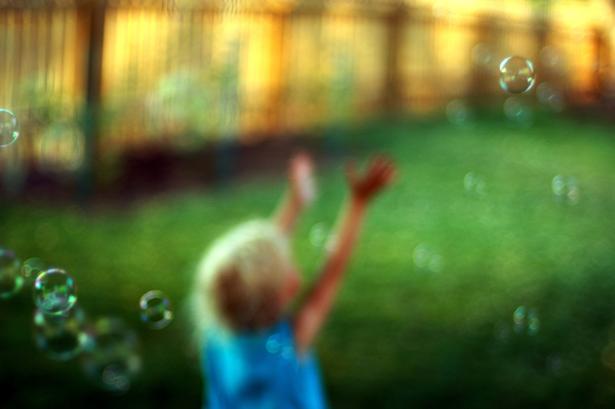 www.flickr.comphotoskubina
