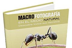 portadapremium-macro