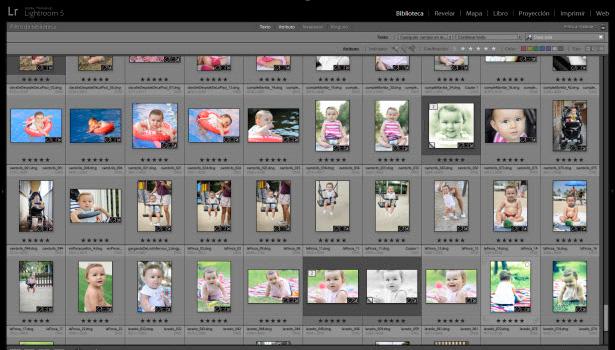Selección de fotos