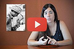 plantilla-videos-principiantes