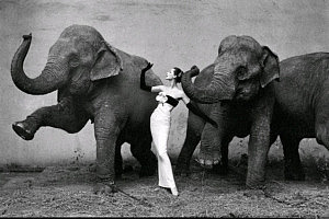 Richard Avedon destacada