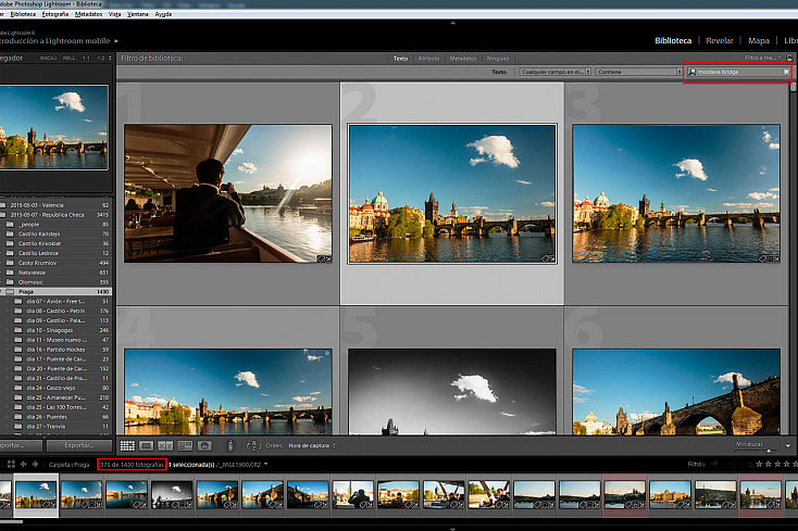 Arriba a la derecha aparecen las opciones del filtro de texto. En la caja de texto podemos introducir cualquier búsqueda. Abajo a la izquierda aparece el número de fotos filtradas respecto del total.