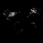 com.pa.lightpollutionmap-w250