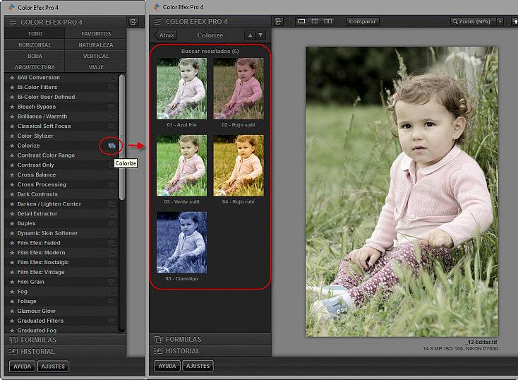 Color Efex Pro 4 - Presets de filtro