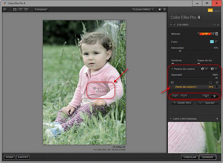 Color Efex Pro 4 - Puntos de control