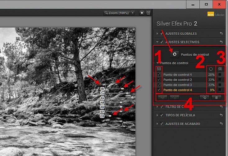 Silver Efex Pro 2 - Ajustes selectivos