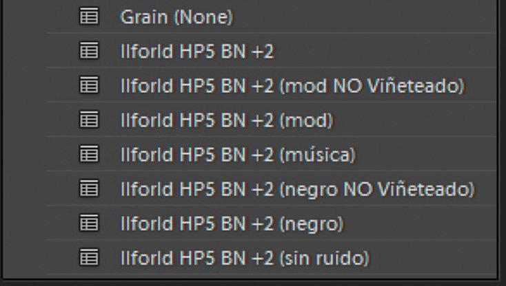 Algunos de mis ajustes para blanco y negro. De uno a otro hay pocas variaciones, como puede ser con o sin viñeteo, modificando el punto negro o el ruido.