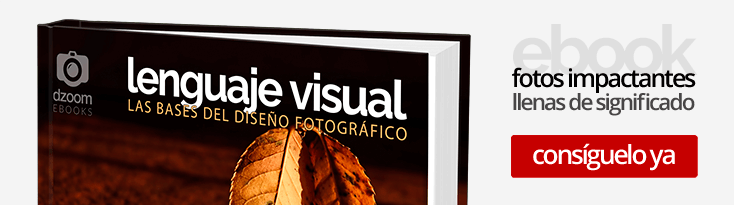 Lenguaje Visual: las Bases del Diseño Fotográfico