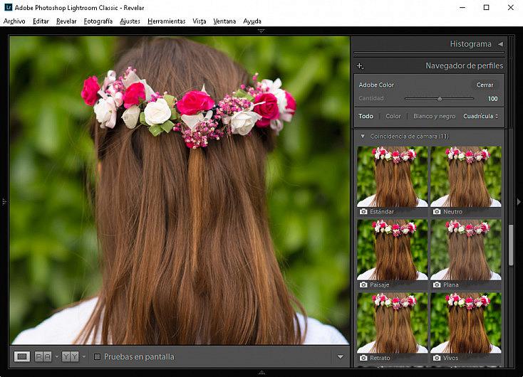Perfiles Color Adobe Lightroom