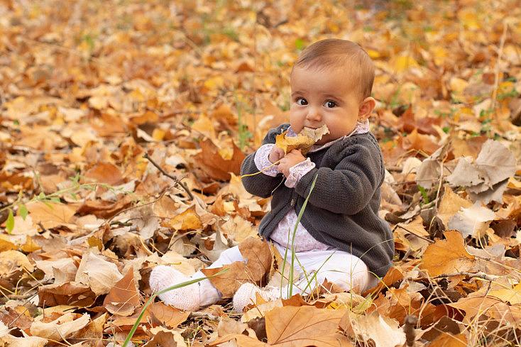 Jugando con las hojas - Cuidado que no se las coman