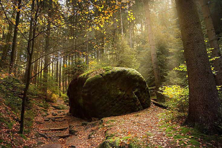 Roca en otoño